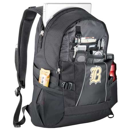 "High Sierra® Level 17"" Computer Backpack"